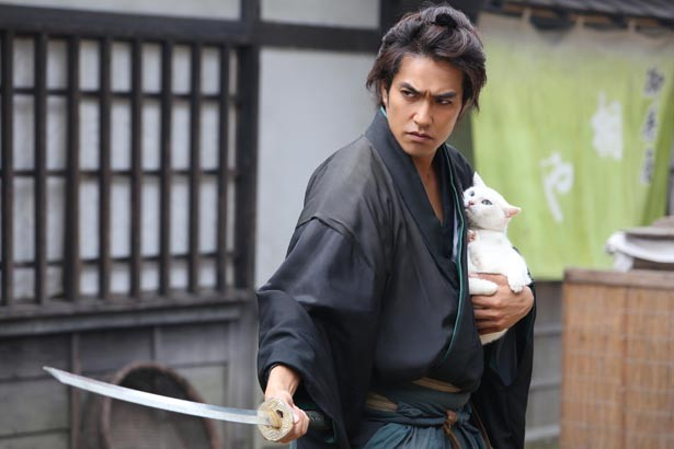 映画『猫侍』出演のタレント猫・あなごが可愛すぎる!