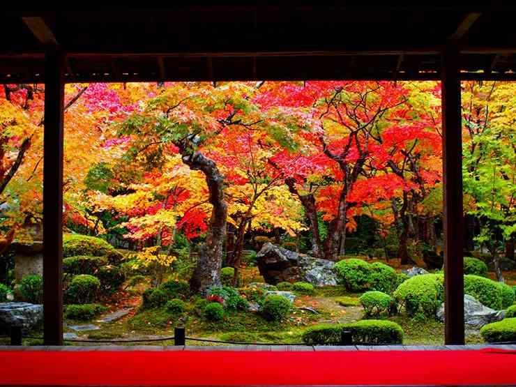 東京都民が「京都に引っ越してムカついたこと6つ」
