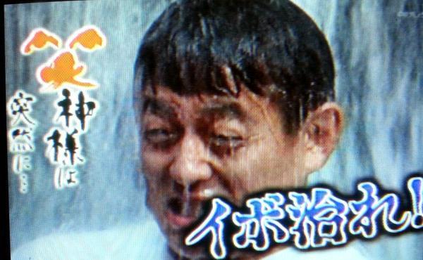 ブッシュワッカーズ】ホリプロ総合【チンピラ中傷ハゲブタキラーカーン [転載禁止]©2ch.net->画像>729枚