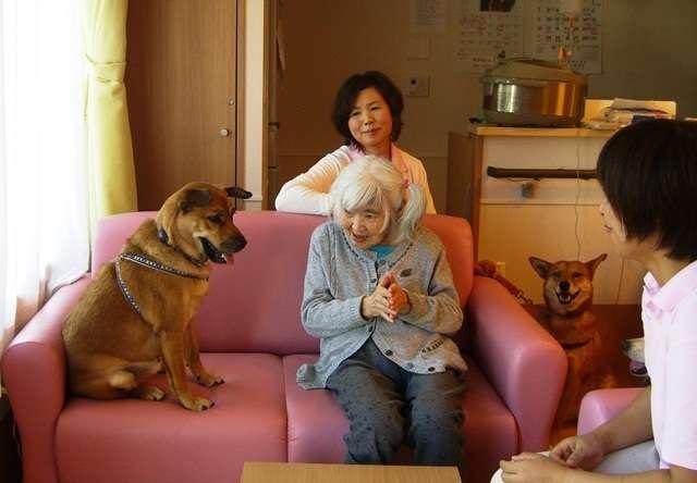 入居者の心の支えに…ペットも一緒に入居できる老人ホームの取り組みが泣ける
