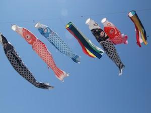 泳げ鯉のぼり相模川2015年の開催場所は?屋台や混雑など現場状況は? | 人生をエンジョイするブログ