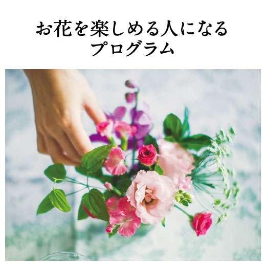 お花屋さんが教える お花を楽しめる人になるプログラム[6回予約プログラム] | フェリシモ