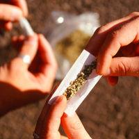 一体なぜ…?世界中で大麻(マリファナ)解禁の動き - NAVER まとめ