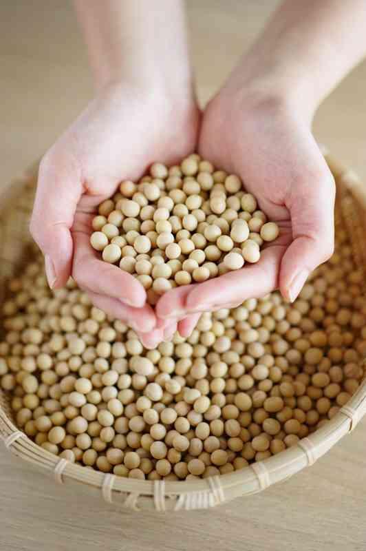 新事実!大豆イソフラボンを取っても効果がある女性は50%だけだった
