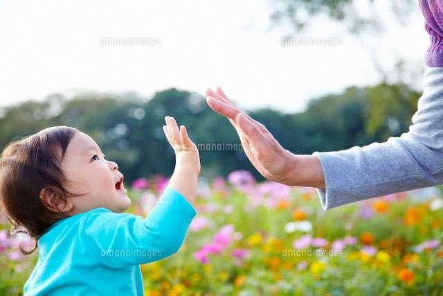両親、義両親が孫に会う割合