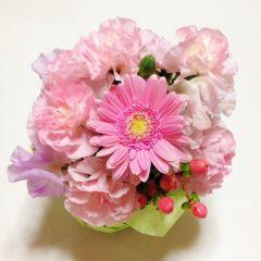 お花たち…1 [42789324] | 完全無料画像検索のプリ画像!