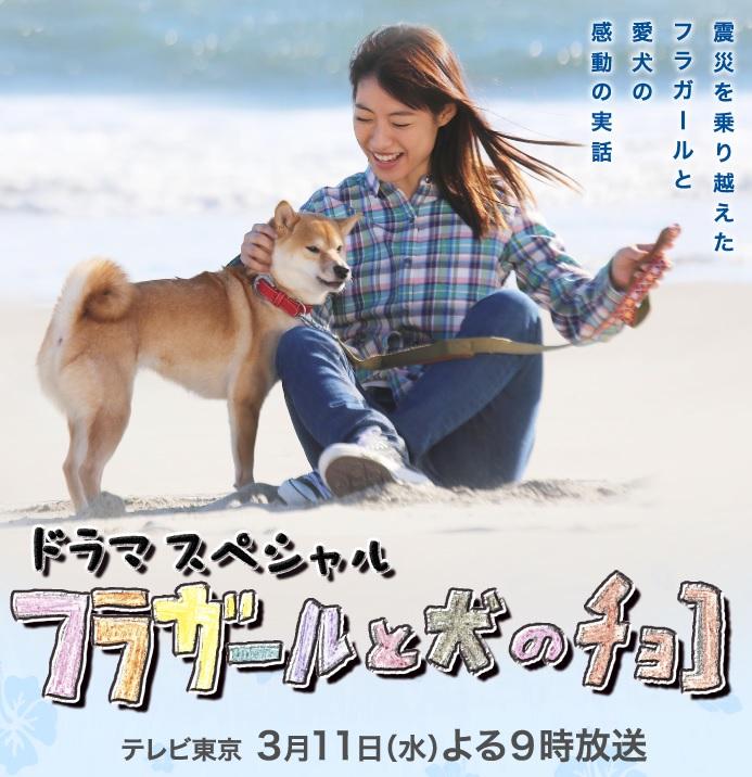 【実況・感想】ドラマスペシャル「フラガールと犬のチョコ」(テレビ東京)