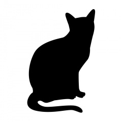 猫の首にひもをかけ車で4km引きずり…動物愛護法違反で男逮捕 「手をひっかかれ」