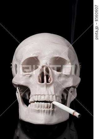 頭蓋骨模型にたばこをくわえさせツイッター投稿した日本歯科大生を処分へ…市民の問合せで発覚