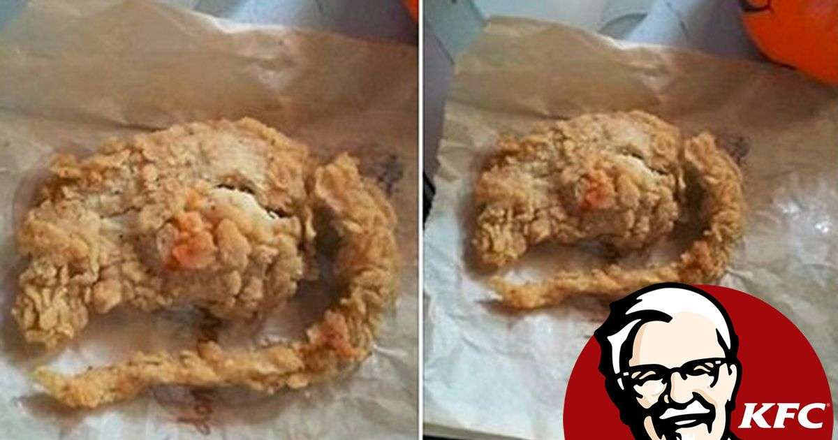 Was this 'deep fried RAT' found in a KFC meal? - Mirror Online