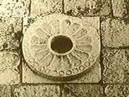 天皇家の菊花紋の真相 | 日本とユダヤのハーモニー