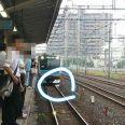 京浜東北線蕨駅の線路で寝たり座ったりする人が現れ、JRが一時壊滅状態に