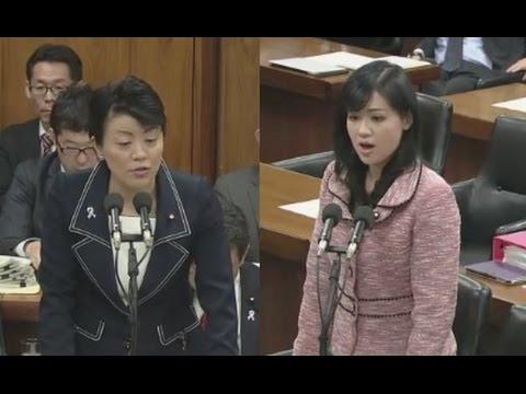 上西小百合氏の質疑に有村治子大臣が半ギレ - YouTube