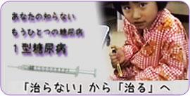 1型糖尿病とは | 日本IDDMネットワーク 1型糖尿病・1型IDDM