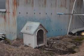 飼い犬消えた 半年で6軒7匹 半径1キロに集中 (群馬県昭和村)
