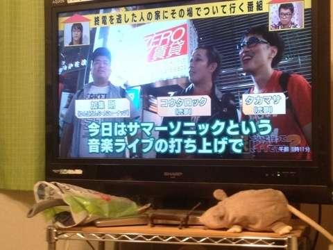 ゆんぼだんぷの画像 p1_3
