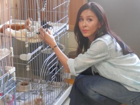 杉本彩「クリスマスにペットを買わないで!」…ペット産業が抱える問題を指摘