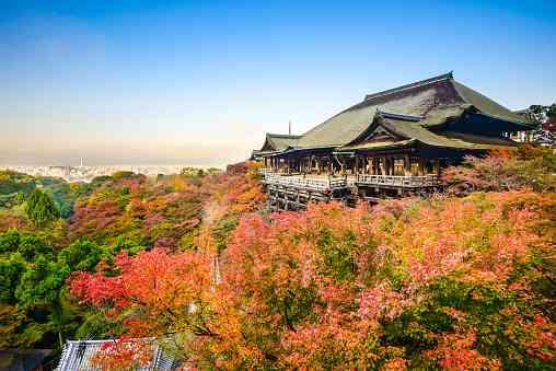 世界の住みやすい都市ランキングTOP10、日本から選出された「3都市」とは? | ZUU online