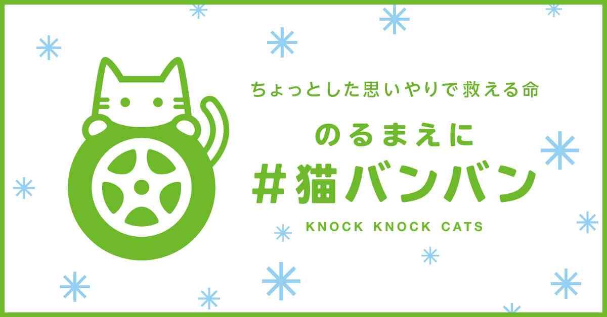 日産:#猫バンバンプロジェクト 猫も人も安心して過ごせる社会のために。