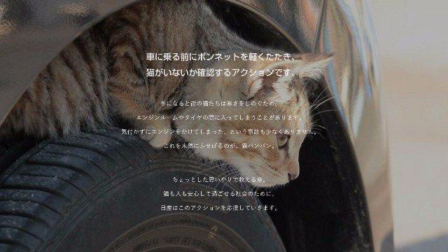 【素敵】日産が「#猫バンバン」本格始動!特設サイトまで作ったらしい! | ANIMALive