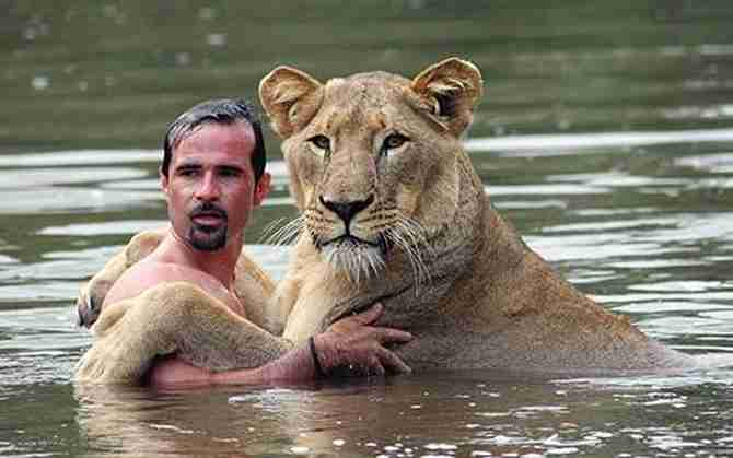 人になついてる動物の画像
