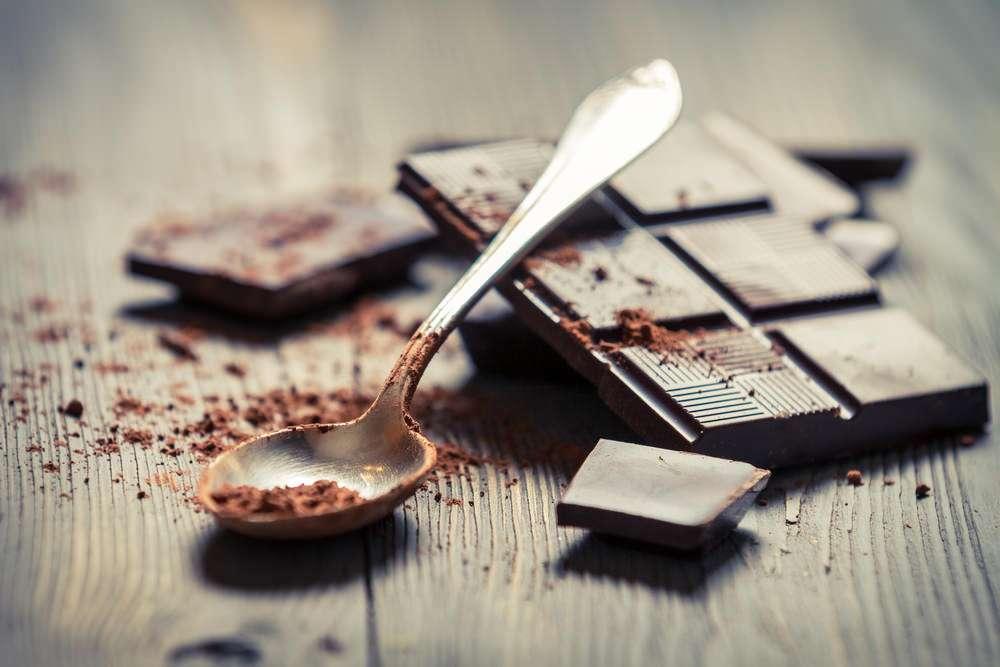 猫がチョコレートを食べた!中毒症状や致死量、対処法は? - pepy