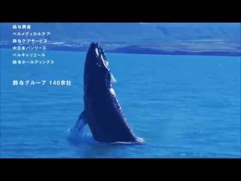 【鈴与グループ】TVCM(くじら篇、2015年10月~) - YouTube