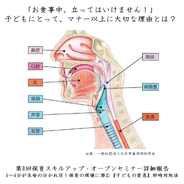 【第8回保育スキルアップ・セミナー開催報告】5~6分が生命の分かれ目!保育の現場に潜む『子どもの窒息』即時対処法|病児保育の資格「認定病児保育スペシャリスト」の(財)日本病児保育協会