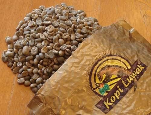 「1杯1500円」コーヒーに第3の波、哲学的こだわりで趣味の領域に