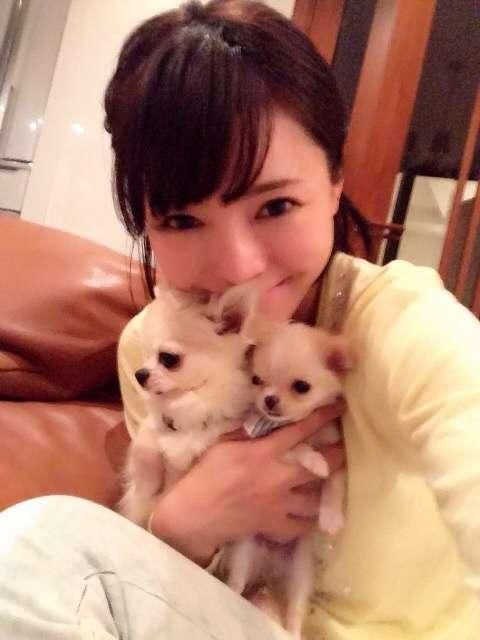 釈由美子悲痛…愛犬の死を明かす「『さくら』なんて花の命が短い名前をつけちゃったからかな」