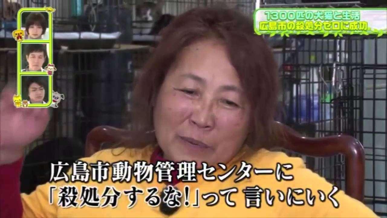 ペットの王国 ワンだランド  犬猫みなしご救援隊 広島