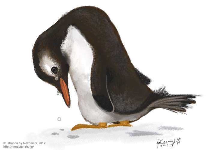 なんという哀愁ただよう背中…「今日のご飯未定」の看板の前に立ち尽くすペンギンが切ない