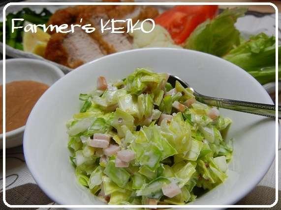 【農家のレシピ】コールスローサラダ by FarmersK [クックパッド] 簡単おいしいみんなのレシピが231万品