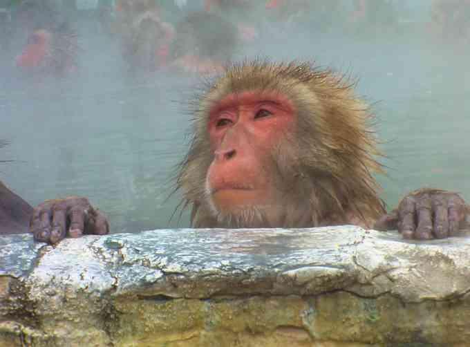 お風呂上がりのケアはどれくらいかかる?