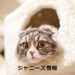 森脇健児をないがしろに!?KAT-TUN上田、「TBS感謝祭」での態度に非難殺到 – アサジョ