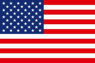 ネイティブアメリカンの血を引く女の子が、里親の白人夫婦の元から引き離される : America Force