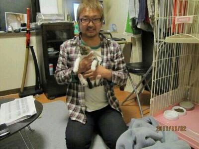 ネコに熱湯かけ殺した疑いの男逮捕「ストレス発散のため」