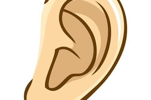 耳掃除は月1~2で充分!?風呂上がりに毎日耳掃除しちゃう人は要注意 | おたくま経済新聞