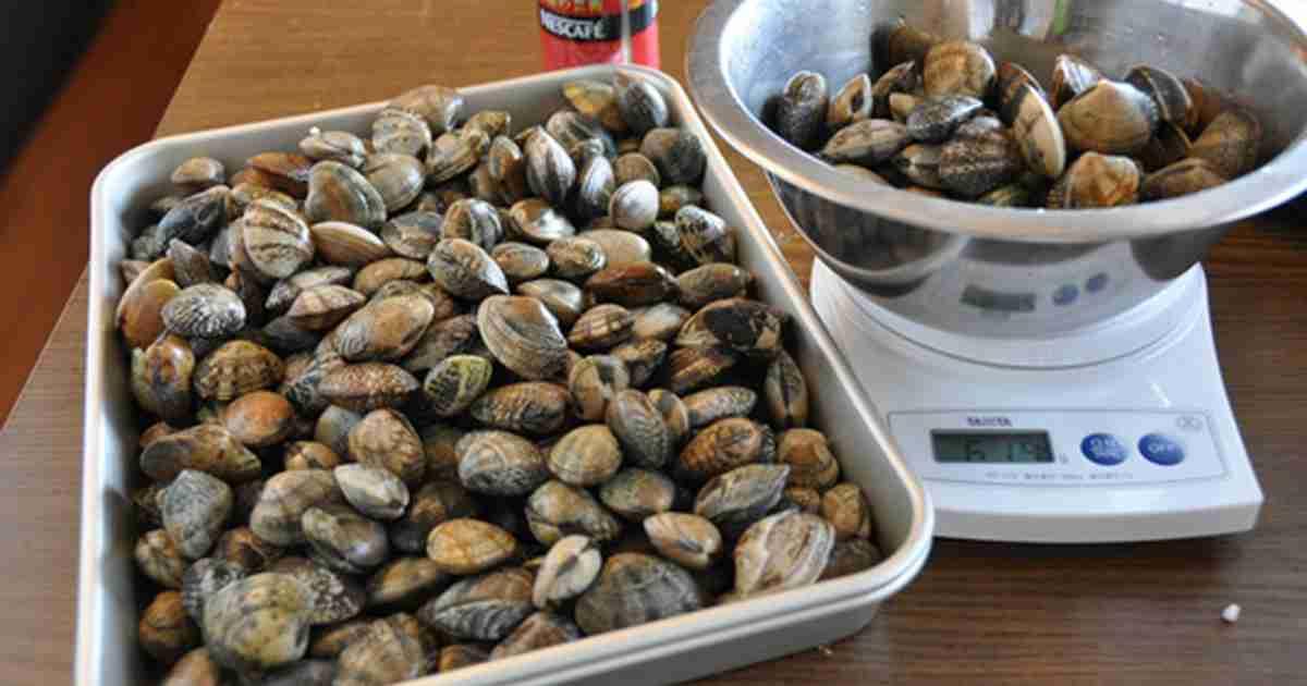 アサリの冷凍保存 by ぶ〜んぶ〜ん [クックパッド] 簡単おいしいみんなのレシピが233万品