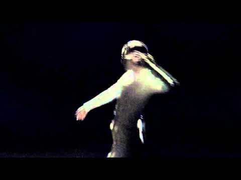 D.A.N. - Native Dancer (Official Video) - YouTube
