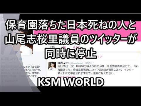 【KSM】保育園落ちた日本死ねの人と山尾志桜里議員のツイッターが同時停止【自作自演】 - YouTube