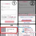 ガルちゃんで画像(サイト)を貼り付ける方法&練習Part10   ガールズちゃんねる - Girls Channel -