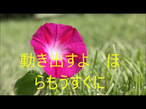山下達郎 - Morning Glory lyrics - YouTube