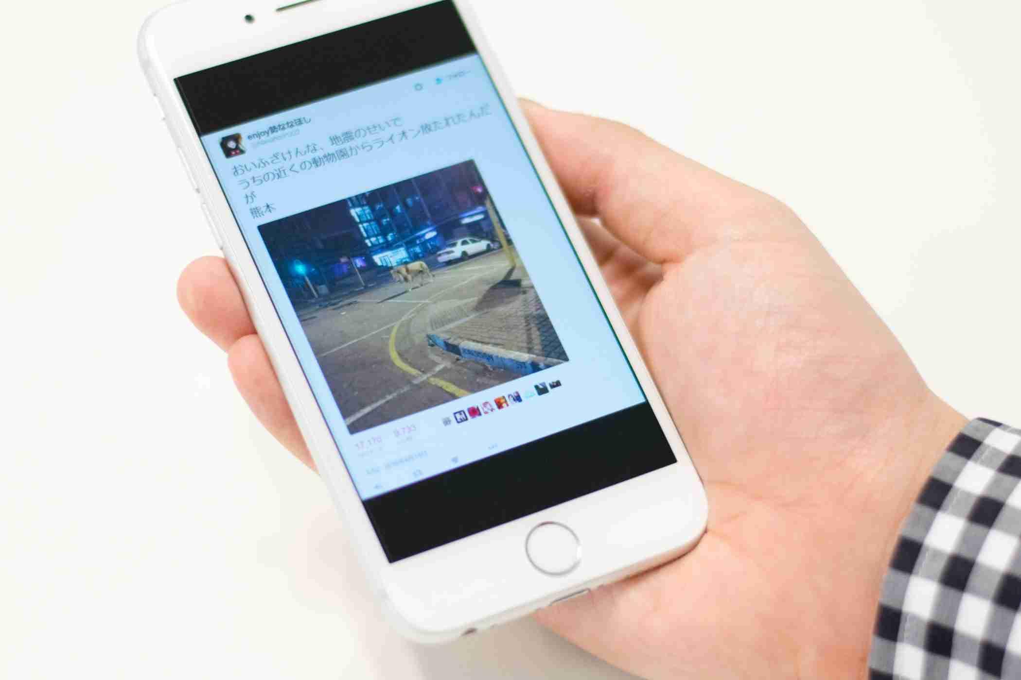 ライオン脱走、井戸に毒……。地震関連デマ。「業務妨害罪になりうる」と弁護士 (BuzzFeed Japan) - Yahoo!ニュース