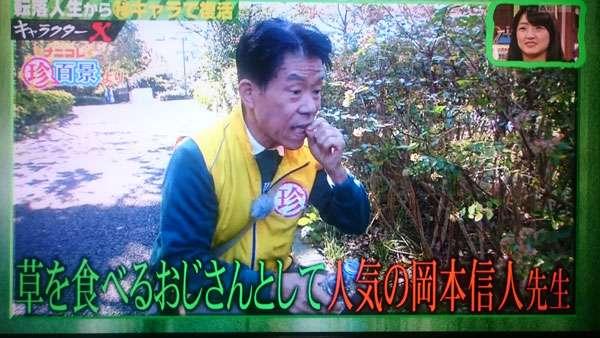 山菜食べ75歳死亡 誤って毒草食べたか