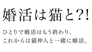 結婚相談所ねこのて /東京の結婚相談、婚活、恋活なら!