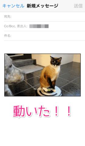 iPhoneにGIFアニメを保存する方法   HeatApp!