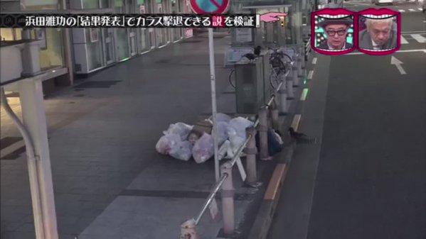 浜田雅功の結果発表でカラス撃退できる説がおもしろすぎて何回も見てる  |ふりーく ᴸᴼᴼᴷᴬᵂᴬᵞ₂さんのTwitterで話題の画像