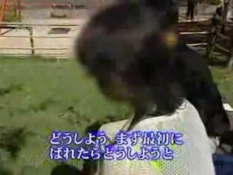 FXで泣いた主婦達 - YouTube