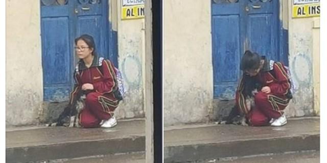 見習いたい!雨に濡れる1匹の犬に寄り添った女子学生に称賛の声